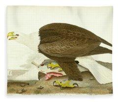 White-headed Eagle Fleece Blanket