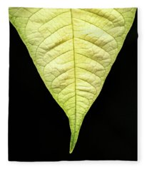 White Poinsettia Leaf Fleece Blanket