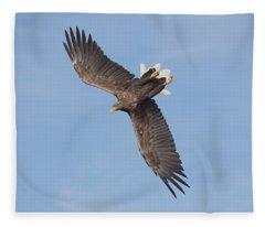 White-tailed Eagle Against A Blue Sky Fleece Blanket