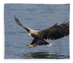 White-tailed Eagle Hunting Fleece Blanket