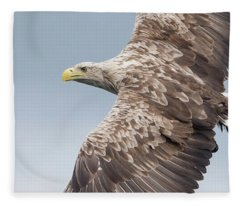 White-tailed Eagle Side On Fleece Blanket