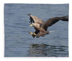 White-tailed Eagle Taking A Fish Fleece Blanket