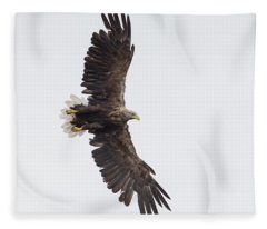 White-tailed Eagle Wingspan Fleece Blanket