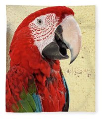 Who Is A Pretty Boy Then ? Fleece Blanket