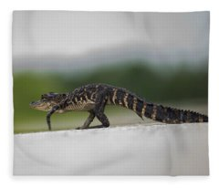 Why Did The Gator Cross The Road? Fleece Blanket