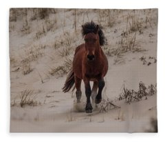 Wild Pony Fleece Blanket
