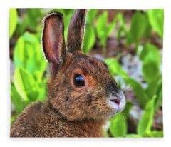 Wild Rabbit Fleece Blanket
