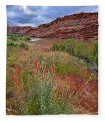 Wildflowers Along Colorado River And Highway 128 Fleece Blanket