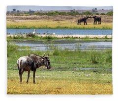 Wildlife Wetlands Fleece Blanket