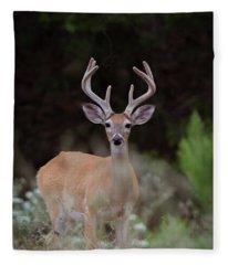 Willow City Buck Fleece Blanket