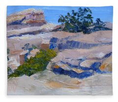 Windy Point Study Fleece Blanket