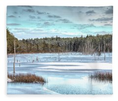 Winter At Lake Oswego Fleece Blanket