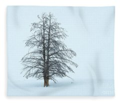 Winter Beauty - Yellowstone National Park Fleece Blanket