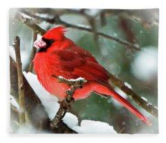 Winter Red Bird - Male Northern Cardinal With A Snow Beak Fleece Blanket