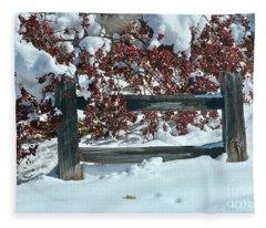 Wintery Fall Fleece Blanket