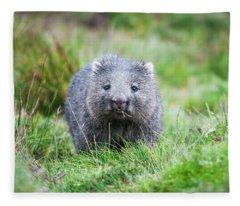 Wombat Fleece Blanket