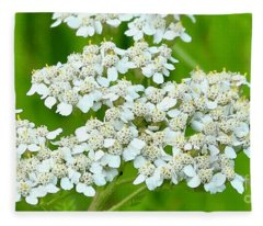 Yarrow And Friend Fleece Blanket