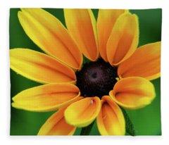 Yellow Flower Black Eyed Susan Fleece Blanket