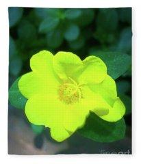 Yellow Hypericum - St Johns Wort Fleece Blanket
