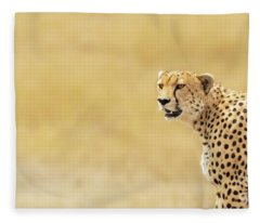 Young Adult Cheetah Banner Fleece Blanket