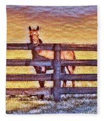 Young Kentucky Thoroughbred Fleece Blanket