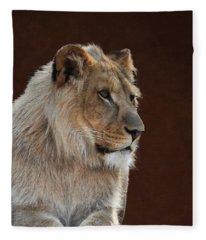 Young Male Lion Portrait Fleece Blanket