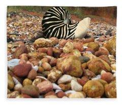 Zebra Nautilus Shell On Bauxite Beach Fleece Blanket