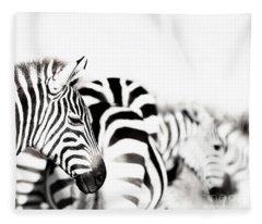 Zebras Black And White Fleece Blanket