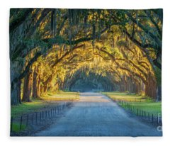 Designs Similar to Wormsloe Historic Site