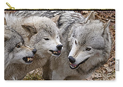 Carry-all Pouch featuring the photograph  Alpha Displeasure 2 by Wolves Only
