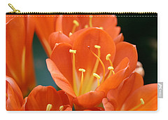Clivia Carry-all Pouch by Karen Silvestri
