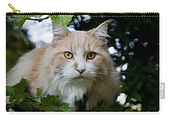 Cream And White Cat Carry-all Pouch