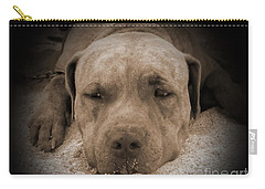 Carry-all Pouch featuring the photograph  Don't Disturb Me by Michelle Meenawong