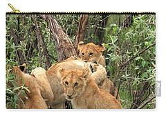 Masai Mara Lion Cubs Carry-all Pouch by Aidan Moran
