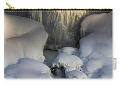 Niagara Falls Frozen Carry-all Pouch
