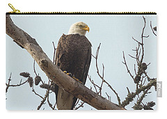 Resting Bald Eagle Carry-all Pouch