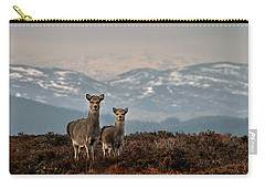 Carry-all Pouch featuring the photograph    Sika Deer by Gavin Macrae