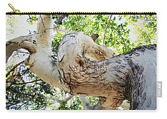 Sycamore Tree's Twisted Trunk Carry-all Pouch