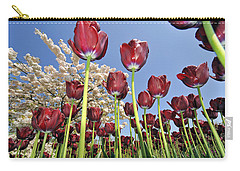 Carry-all Pouch featuring the photograph 090416p029 by Arterra Picture Library