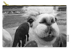 Alpaca Face Carry-all Pouch