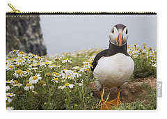 Atlantic Puffin In Breeding Plumage Carry-all Pouch by Sebastian Kennerknecht