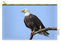 Bald Eagle 6 Carry-all Pouch