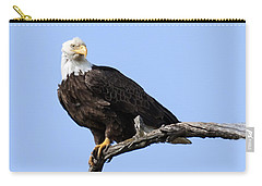 Bald Eagle 7 Carry-all Pouch