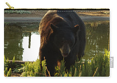 Bear 1 Carry-all Pouch