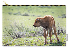 Bison Calf Carry-all Pouch