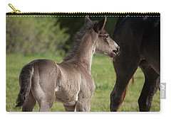 Black Foal Carry-all Pouch
