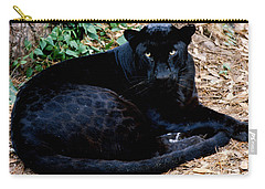 Black Leopard Carry-all Pouch by Mark Newman
