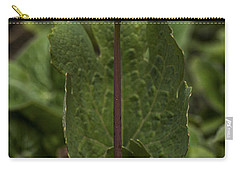 Bloodroot Carry-all Pouch