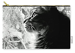 Carry-all Pouch featuring the photograph Bo by Jacqueline McReynolds