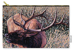 Bugle Boy Carry-all Pouch